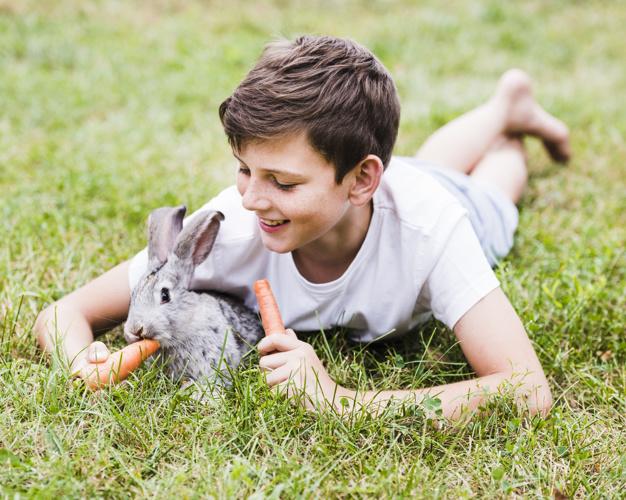 dreng med kanin